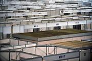 Nederland, Maastricht, 8-4-2020  In congrescentrum MECC in Maastricht is een noodvoorziening opgetrokken voor de opvang van coronapatienten. In totaal 276 bedden voor patienten uit de regio Limburg die in het ziekenhuis opgenomen moeten worden. Alle bedden hebben een aansluiting voor zuurstof die uit een externe tank gehaald wordt. Er zijn aparte apotheek voorzieningen en alle apparatuur en medische hulpmiddelen zijn aanwezig waaronder een klein lab, laboratorium. ppa, persoonlijke beschermingsmiddelen.Vrijwilligers van het rode kruis gaan het zorgpersoneel assisteren. Foto: Flip Franssen