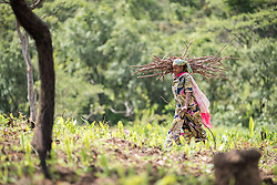 4 June 2019, Meiganga, Cameroon: A woman carries firewood at a farm near the Ngam refugee camp. Supported by the Lutheran World Federation, the Ngam refugee camp, located in the Meiganga municipality, Adamaoua region of Cameroon, hosts 7,228 refugees from the Central African Republic, across 2,088 households.
