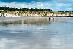 A couple and thier two dogs walk on smooth wet North Beach in the sea side town of Bridlington West Yorkshire England<br /> <br />  4 August 2016<br />  Copyright Paul David Drabble<br />  www.pauldaviddrabble.photoshelter.com