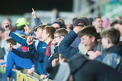 South stand after Falkirk's Lee Miller scored their goal. Falkirk 1 v 1 Morton, Scottish Championship game played 5/11/2016 at The Falkirk Stadium. Pic Ross Schofield.