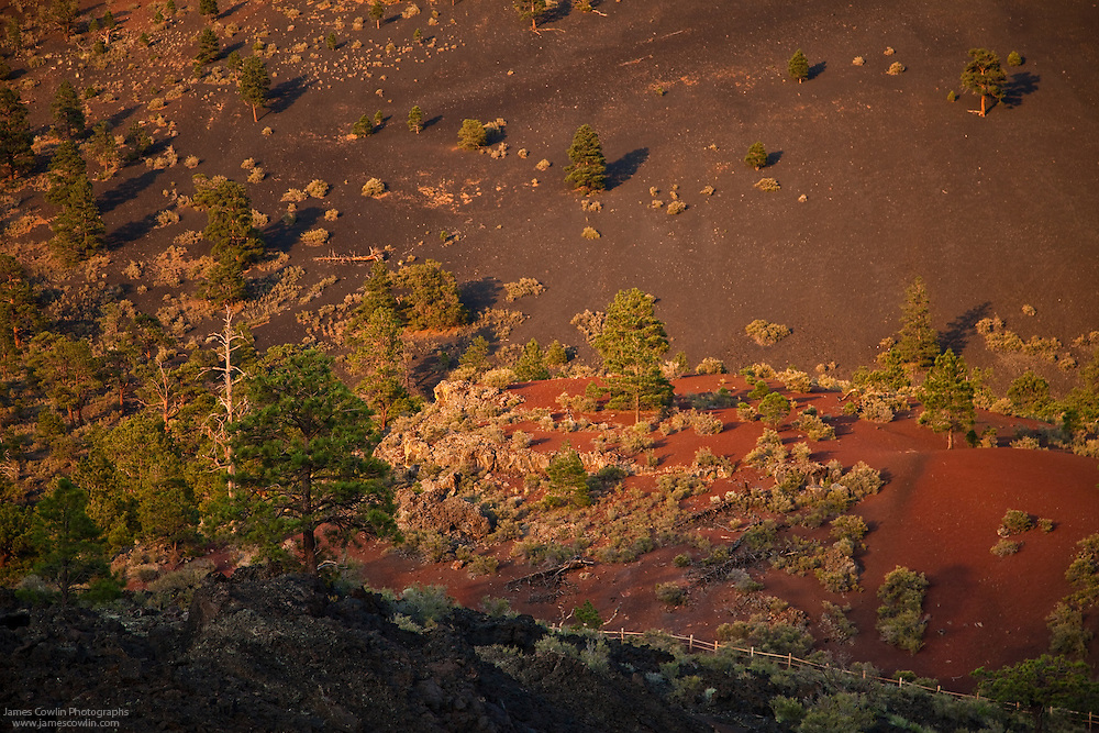 Cindars and lava flow on Sunset Crater along the Lava Flow Trail