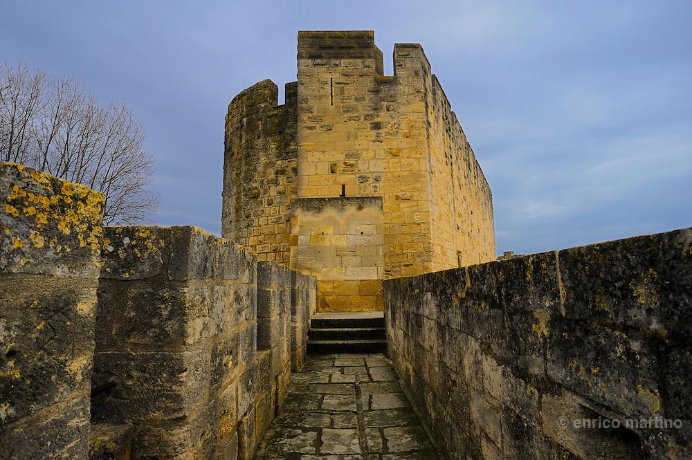 Aigues-Mortes conta una cinta muraria medioevale praticamente intatta.