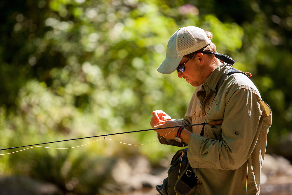 Fly fisherman changing his fly while Brook Trout fishing on the Rapidan River.