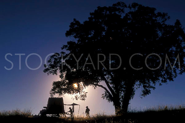 Silhouette of a wagon under the shade of a tree in front of a Texas sky