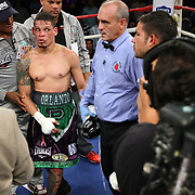 """Orlando Cruz (green trunks) , ranked as the #4 Lightweight by the WBO, awaits the final decision after his fight against Jorge Pazos at the Kissimmee Civic Center in Kissimmee, Florida, on Friday, October 19, 2012. The Puerto Rican Cruz recently described himself as """"a proud gay man"""" and the first active boxer having pronounced so, in boxing history. Cruz won the fight in a 12-round decision. (AP Photo/Alex Menendez)"""