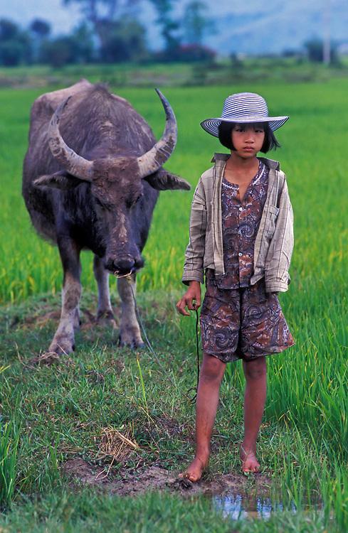 Young Vietnamese girl tends her water buffalo, near Hue, Vietnam
