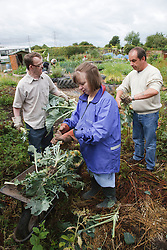 People with learning disability with care staff working on allotment