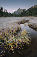 Washington Pass wetlands, North Cascades Washington