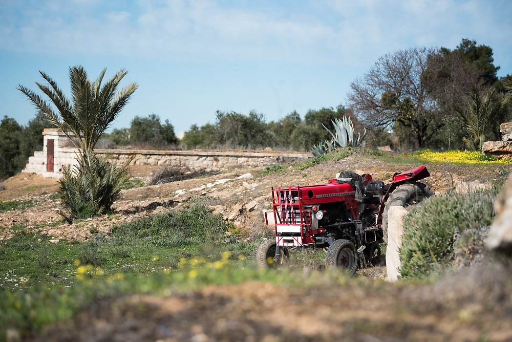 28 February 2020, Jerusalem: A tractor stands parked on the Mount of Olives. The Lutheran World Federation campus, including the Augusta Victoria Hospital campus, is one of few green areas still remaining in East Jerusalem.