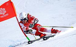 Magdalena Luczak (POL) during giant slalom race at FIS European Cup Krvavec 2021, February 2, 2021 in Krvavec, Cerklje na Gorenjskem, Slovenia. Photo by Matic Klansek Velej / Sportida