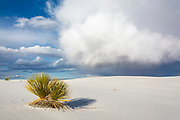 Storm clouds gather over the gypsum dunes of White Sands National Monument, New Mexico
