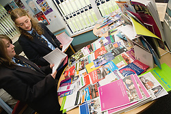 Secondary school students exploring further education and career options,