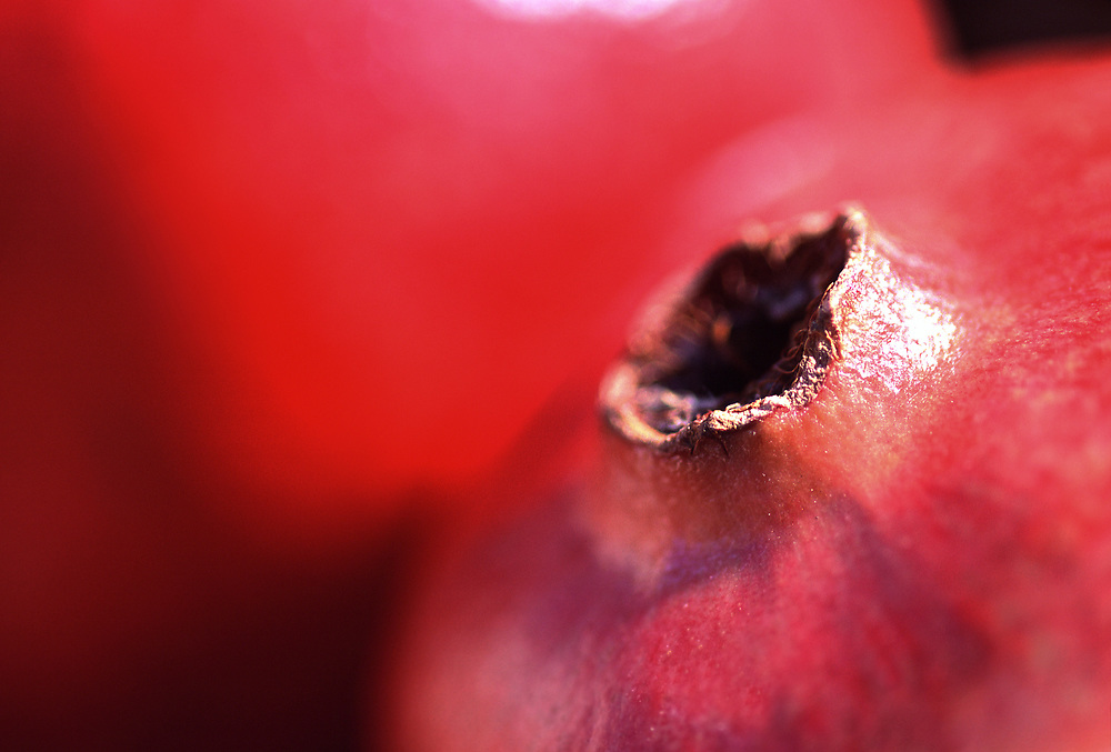 Extreme close up selective focus photograph of a couple of Pomegranates