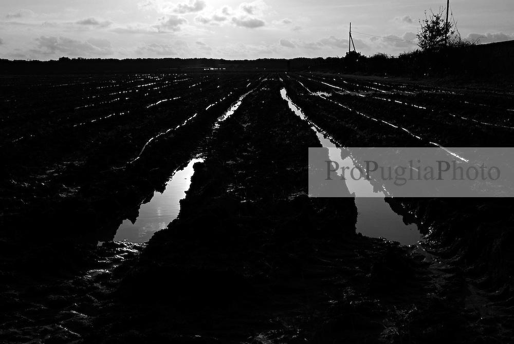 campo allagato dopo la pioggia in contrada lobia