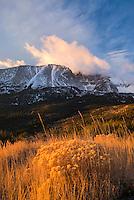 Wheeler Peak at sunrise, Great Basin National Park Nevada USA