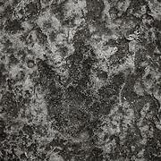 Dinosaur Footprint, Holyoke, MA