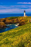 Yaquina Head Lighthouse (the tallest lighthouse in Oregon), near Newport, Oregon USA.
