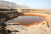 Israel, Dead Sea, Water pools in a sink hole on the shore of the Dead Sea.