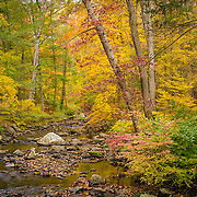 What could better describe the beauty of autumn and its glorious colors?  The water is moving very slowly here creating some wonderful color rel=flections to enhance the wonderful reds, oranges, yellows and golds on the trees.  Overall an oasis of peace and calm in a turbulent world.