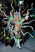 Dancer taking part in a traditional Rio Carnival in Rio de Janeiro, Brazil