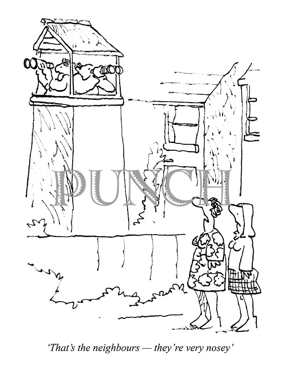 'That's the neighbours - they're very nosey'