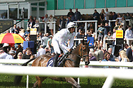 Horse and jockey canter up to the race starting point during Uttoxeter Races at Uttoxeter Racecourse, Uttoxeter, United Kingdom on 30 July 2017. Photo by John Potts.
