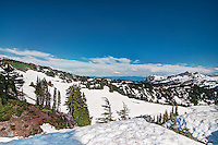A sunny summer day on Washington's Mount Rainier just at the top of the tree line above Paradise on the mountains southern face. While the meadows might still be covered in snow, the air was warm and the open spaces were full of blooming wildflowers!