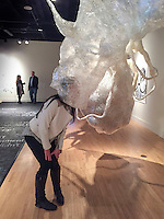 Photograph ©2015 Tom Wagner. Photos of Icebreaker show at KCAD fed galleries, DisArt festival 2015, in Grand Rapids, MI, April 2015.<br /> no usage allowed without written permission from  Tom Wagner . All rights reserved. Rights Controlled. copyrighted image