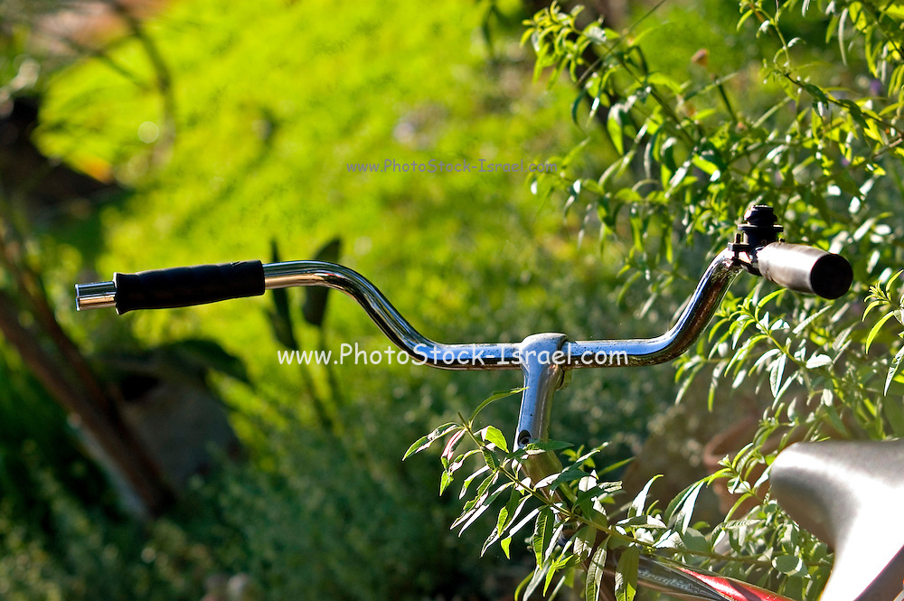 Handle bars im the bushes