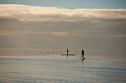 Paddle Board surfers take advantage of the calm sea at Troon beach, Thursday 02 November 2017, Angie Isac   EEm