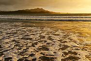Oceania; New Zealand; Aotearoa; North Island, Coromandel, sunrise at Whitianga