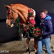 2019-02-emerald-eurohorse