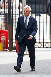 © Licensed to London News Pictures. 18/07/2017. London, UK. Secretary of State for Exiting the European Union DAVID DAVIS is seen in Downing Street after a cabinet meeting in London on Tuesday, 18 July 2017. Photo credit: Tolga Akmen/LNP