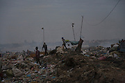 RUBBISH DUMP RECYCLING. South East Asia, Cambodia, Phnom Penh. Smokey Mountain, Steung Mean Chey, is Phnom Penh's municipal rubbish dump. Thousands work there, some 600 minors and 2000 adults, recycling the city's rubbish, dumped there by garbage trucks every day. The dump is notorious as many very young children work there. People eat and sleep overnight in the rubbish and fumes, under plastic tarpaulins or in the open air. They work 24 hours a day, like miners, with headlamps at night, collecting plastic, metals, wood, cloth & paper, which they sort and clean, weigh and sell, to be carried away for recycling. A day's work typically brings less than a dollar per person. One and a half to two dollars per day per family. The overpowering, acrid odour of grey smokey fumes blows across the dump, from which the place gets its name 'Smokey Mountain'. It can be smelt miles away. The shantytowns and squats, the recycling worker's homes butt onto or are inside the dump itself. There is no running water, sanitation and many are ill. Children often work with friends or relatives. Religious and ngo's help some children, but this is often resisted by families who need the extra income they generate.///Workers gather their day's collection as nighfalls over Smokey Mountain.