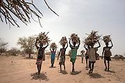 Home wood is collected by the children. Mali