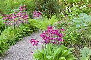 Stonyford Cottage Gardens - May