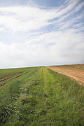 Big sky over fields, Suffolk farming landscape scenery, East Anglia, Englan