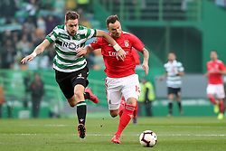 February 3, 2019 - Lisbon, Portugal - Benfica's Suisse forward Haris Seferovic (R ) vies with Sporting's defender Sebastian Coates from Uruguay during the Portuguese League football match Sporting CP vs SL Benfica at Alvalade stadium in Lisbon, Portugal on February 3, 2019. (Credit Image: © Pedro Fiuza/ZUMA Wire)