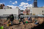 High Line Spring Cutback | REI