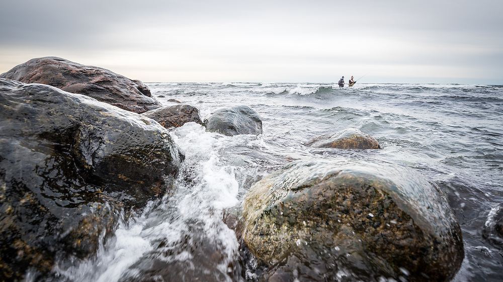 25 November 2016, Gotland, Sweden: A day of fishing for seatrout along the Gotland coastline, with instruction by guides from Fish Your Dream.