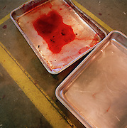 Trays of spilled dye derv he hangar that makes the coloured smoke of the Red Arrows, Britain's RAF aerobatic team.