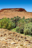 The fertile oasis of Ouled Chaker, ziz Gorge, Morocco .<br /> <br /> Visit our MOROCCO HISTORIC PLAXES PHOTO COLLECTIONS for more   photos  to download or buy as prints https://funkystock.photoshelter.com/gallery-collection/Morocco-Pictures-Photos-and-Images/C0000ds6t1_cvhPo