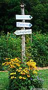 Solebury Orchard<br /> August 2010