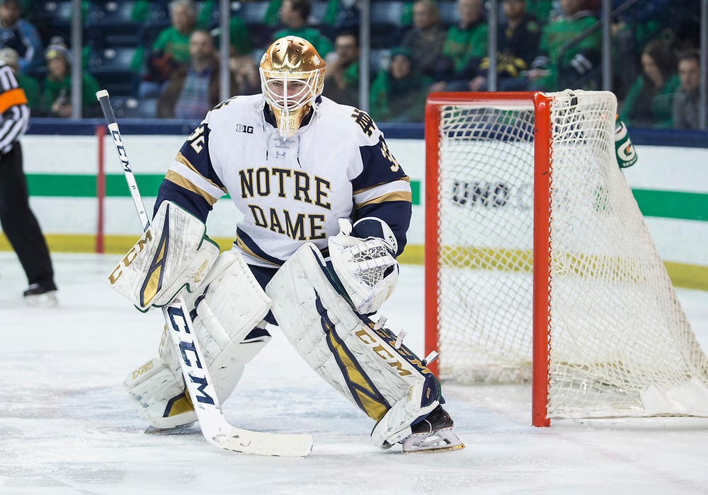 February 15, 2019:  Notre Dame goaltender Cale Morris (32) during NCAA Hockey game action between the Wisconsin Badgers and the Notre Dame Fighting Irish at Compton Family Ice Arena in South Bend, Indiana.  Wisconsin defeated Notre Dame 2-1.  John Mersits/CSM