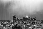1962-15/05 Donkeys Climb Croagh Patrick