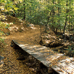 A wooden bridge spans a dry creek on the Shaw Trail in Pawtuckaway State Park.  Deerfield, NH