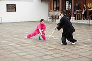2014_Wudang_peony festival