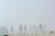 People walking on sand in fog at Pfeiffer Beach, Big Sur Coast, Monterey County, California