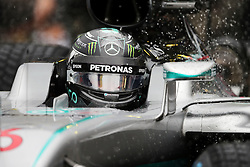 Nico Rosberg (GER) Mercedes AMG F1 W07 Hybrid.<br /> 13.11.2016. Formula 1 World Championship, Rd 20, Brazilian Grand Prix, Sao Paulo, Brazil, Race Day.<br />  <br /> / 131116 / action press
