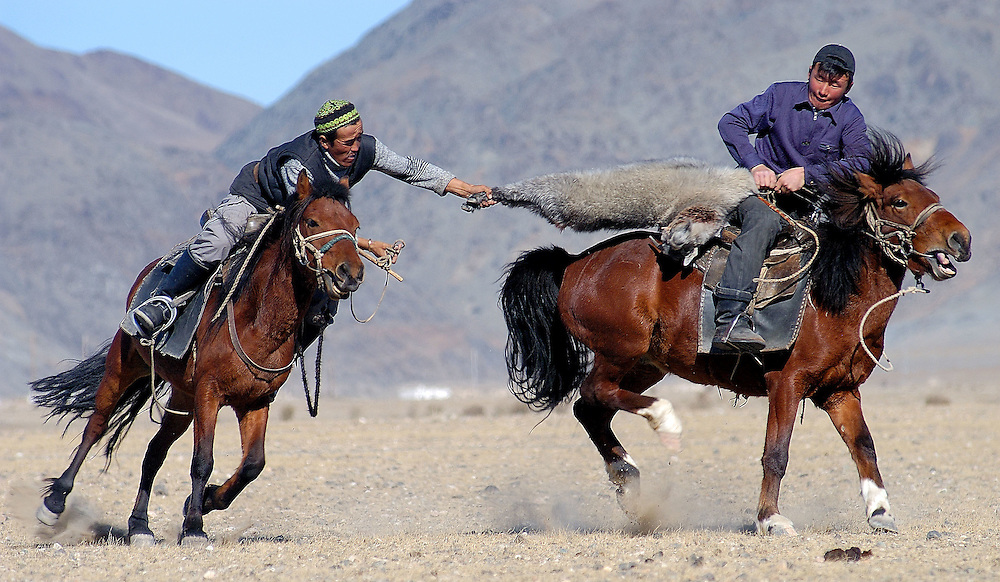 Two Kazakh riders struggle for control of a dead goat in a game of Kokpar also known as Bushkashi at the annual Eagle Hunting Festival, Bayan Olgi, Mongolia, Oct 2, 2004.  Kokpar requires a combination of strength, courage, and horsemanship skills.  This traditional game has come back since the Soviet withdrawal from the region.  The Kazakhs of Mongolia play one on one, with 10 men on each team.  When a rider loses his grip on the goat or falls off his horse he has to join the opposing team.  Eventually one team has all the riders on its side and is the winner.  Kokpar or Bushkashi is also played in a ruby style in other parts of Central Asia including Kazakhstan.  Hundreds of riders may line up on each side, and then mayhem prevails as they all rush to grab the goat.  **  This image for non exclusive licensing only